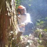 大田市森林組合
