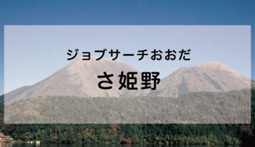 株式会社 さ姫野